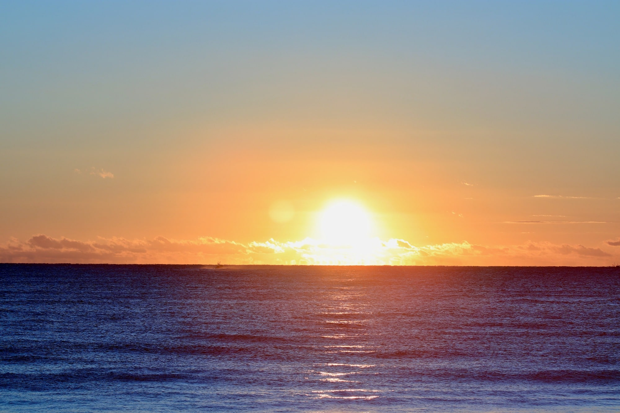 太陽 コロナ