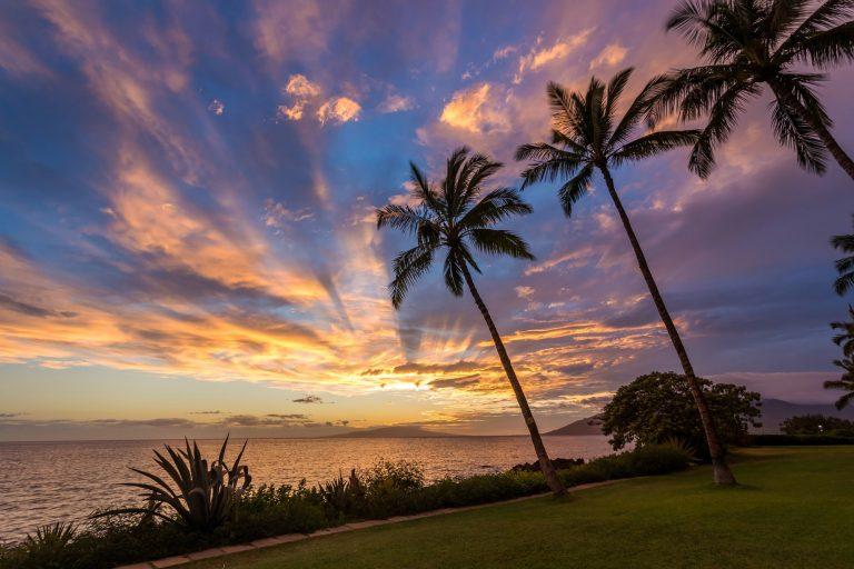 ハワイに伝わる癒しの言葉 ストレスから解放されたい!コロナ疲れに向き合う3つの方法|TIME SHARING|タイムシェアリング |スペースマネジメント|あどばる|adval|SHARING