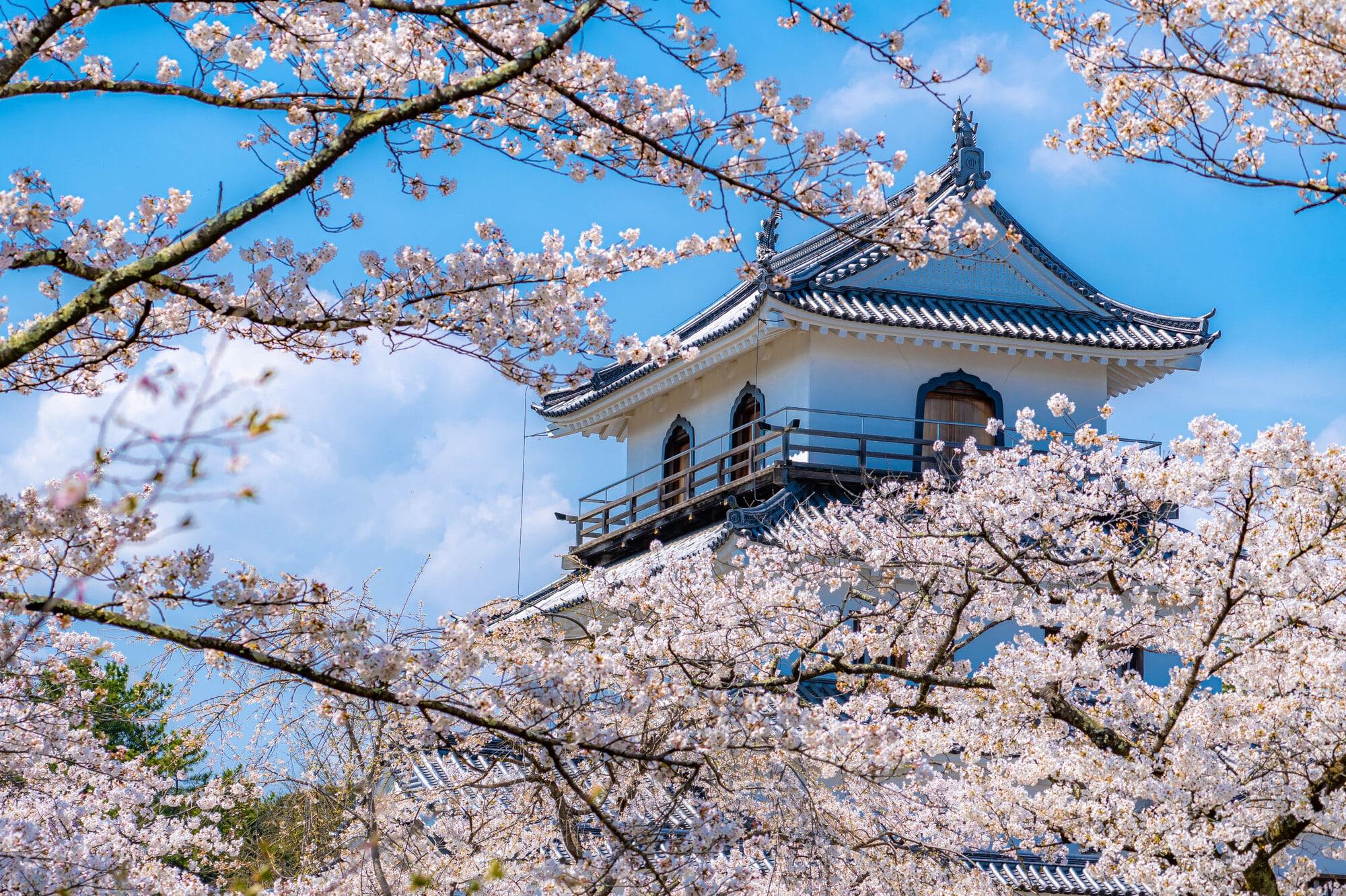 移住に最適!宮城県出身のライターが宮城県の魅力をたっぷりお伝えします|TIME SHARING|タイムシェアリング|スペースマネジメント|あどばる|adval|SHARING